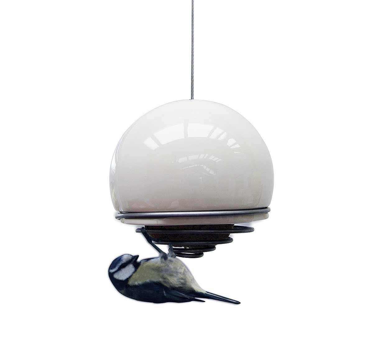 bird on white birdball on white background